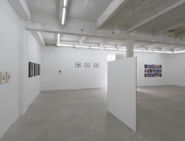 8 Kunst im Wald, Ausstellungsansicht