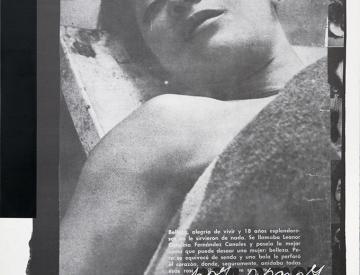 6 Eugenio Dittborn: Por amor