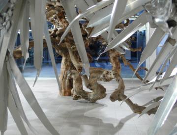 2 Ausstellungsansicht Tepidarium