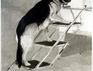 9 Olav Westphalen, Pet Steps, 2006